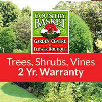 Trees, Shrubs, Vines Niagara
